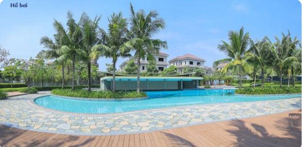 hồ bơi tại saroma villa
