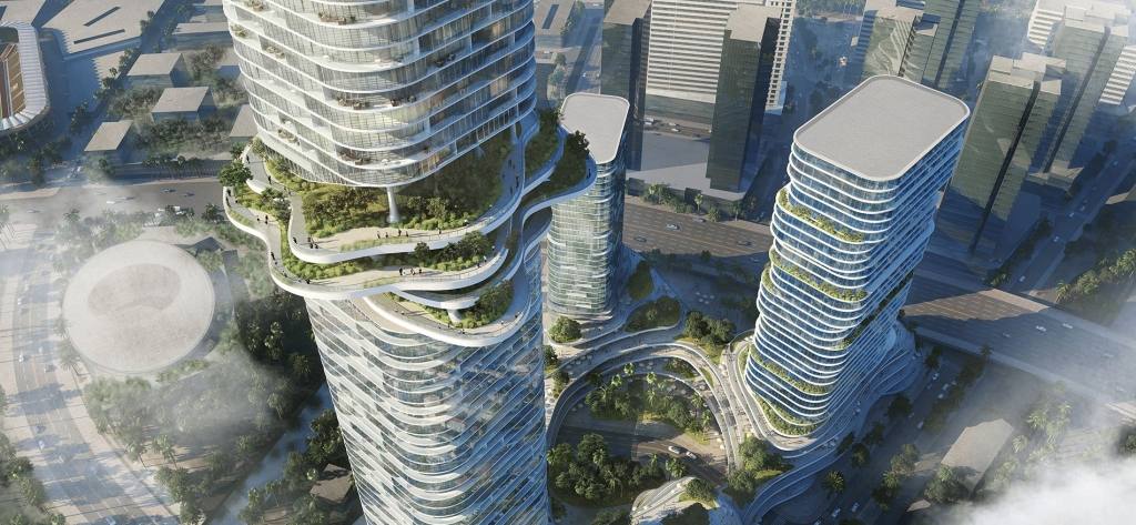 Sky Forest and Cultivate Terraces